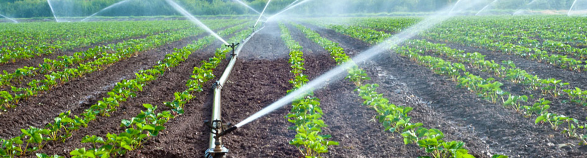 Irrigation Works Chennai